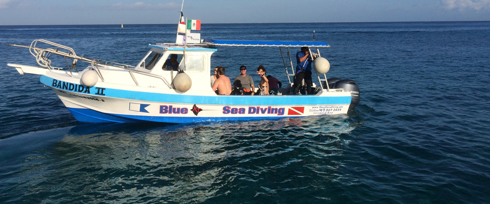 blue xt sea diving cozumel
